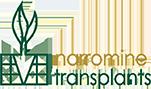 Narromine Transplants